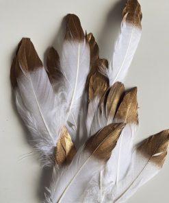 декоративные перья купить